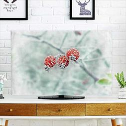 aolankaili Cover for Wall Mount tv Frost hit by Frost on The