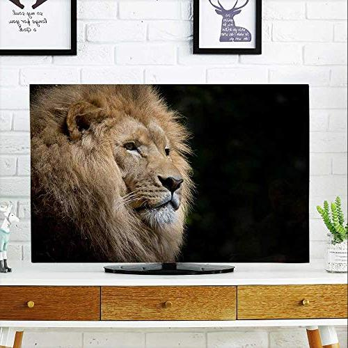 protect tv lion head