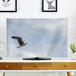 protect tv flying birds sky